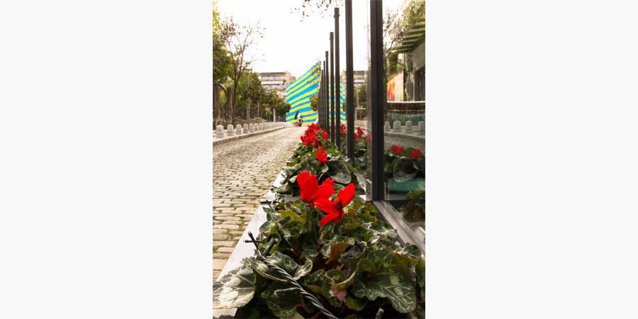 francos_cafe_bar_citypedia_kavala_015