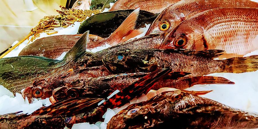 psaraki_citypedia_kavala_food_005