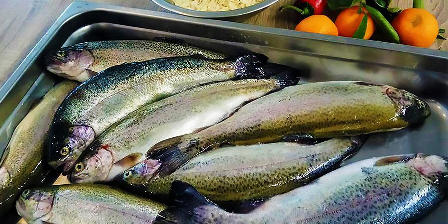 psaraki_citypedia_kavala_food_008