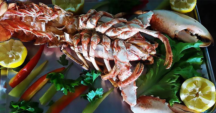 ostria-restaurant-kavala-citypedia-fagito-001